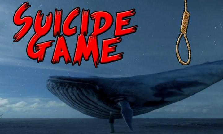 Fact check: What's the Blue Whale suicide game - and should you be worried?