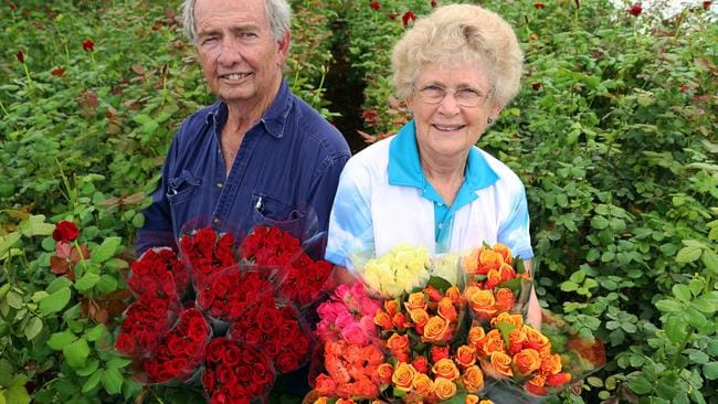 Queensland rose growers Geoff Choveaux and Eve-Lyn McGrath have been helping romances bloom on for years. Picture: Natasha Emeck.