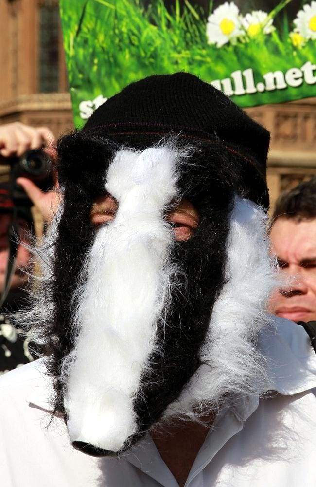 Protesters demonstrate against the extension of badger culling in England. Picture: Sean Dempsey/PA Wire