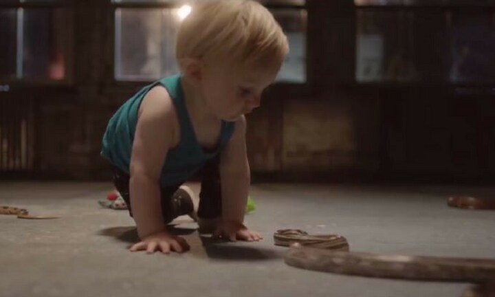 The strange thing scientists learnt from letting babies play with snakes