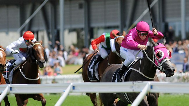 Shaun Guymer rides Catkins to victory at Rosehill last year . Picture: Bullard Simon