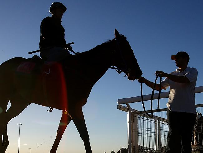 Damian Browne after riding Buffering at trackwork on Tuesday morning. Picture: Peter Wall