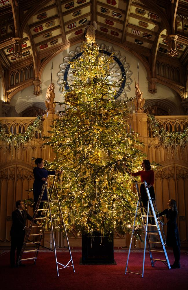 Employees pose with a six-metre Nordmann Fir tree in Windsor Castle, England. The Windsor Castle State Apartments are used by members of the Royal Family for hosting and events. Picture: Jack Taylor/Getty Images