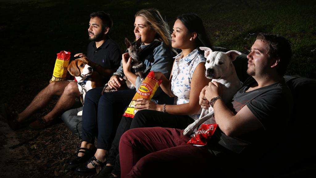 Catching A Movie With Your Pooch Is One Of The Highlights Outdoor Season