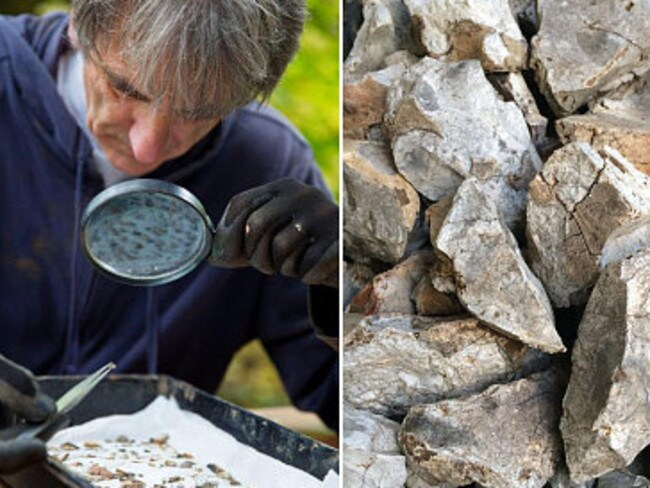 Fragmentary finds ... University of Buckingham pictures showing some of the traces of the 4000BC encampment so far recovered. Source: Supplied