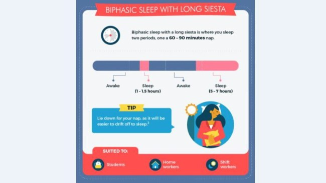 Picture: Supplied. Biphasic sleep with long siesta.