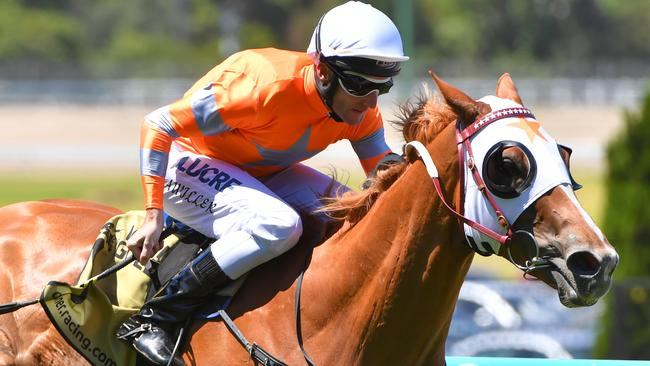 Brad Rawiller riding Burning Front wins at Moonee Valley.