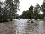 A park is inundated with water from the North Para River, at the entrance to Tanunda. Picture: Dean Martin