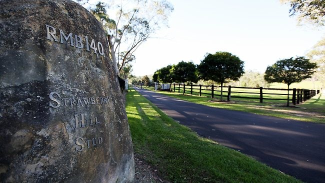 John Singleton's Mt White property Strawberry Hill Stud where More Joyous is now situated. Picture: Nikki Short