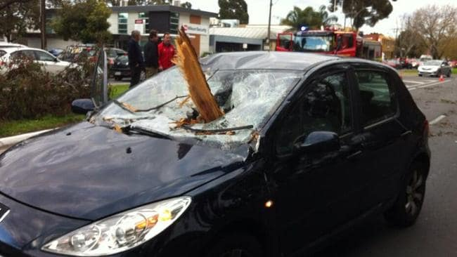 Anneliese Corletto's car after a falling branch smashed through her windscreen. Picture: Channel 10