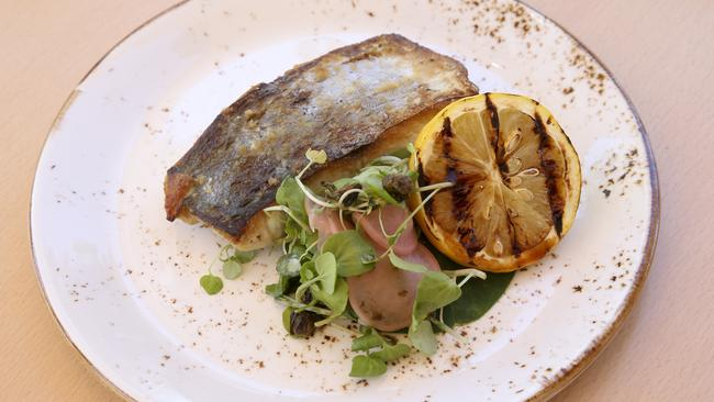 Restaurant review river quay fish at south bank the for Fish food bank
