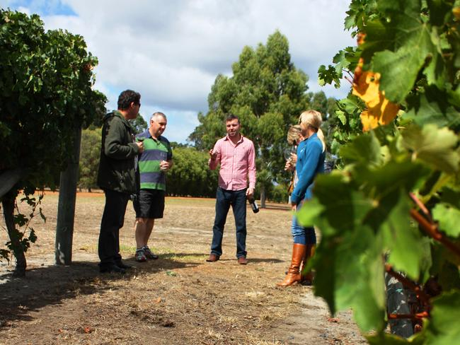 The Margaret River is home to over 150 wine producers.