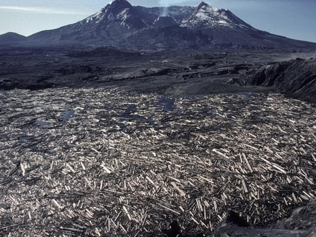 The aftermath of the volcano eruption. Picture: Courtesy of Mount St Helens Science and Learning