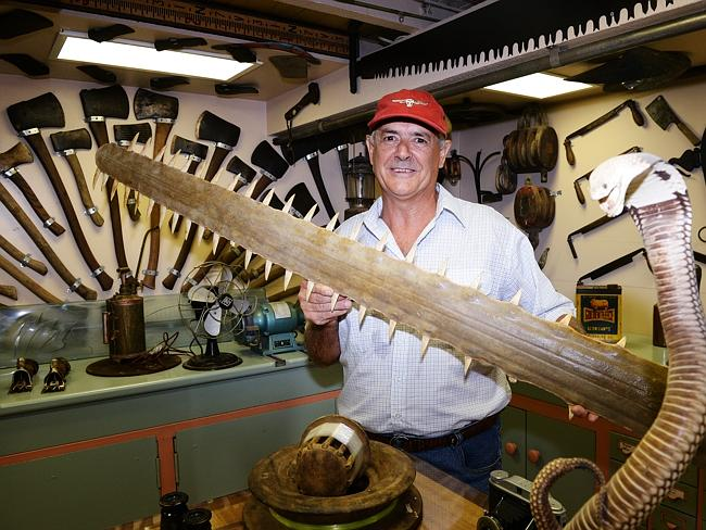 Chopping items, both natural and man-made, are a feature of Alan Thompson's quirky man cave.