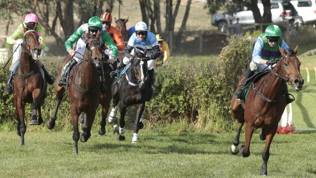 Zed Em leads the field in the Von Doussa Steeplechase. Picture: Tait Schmaal