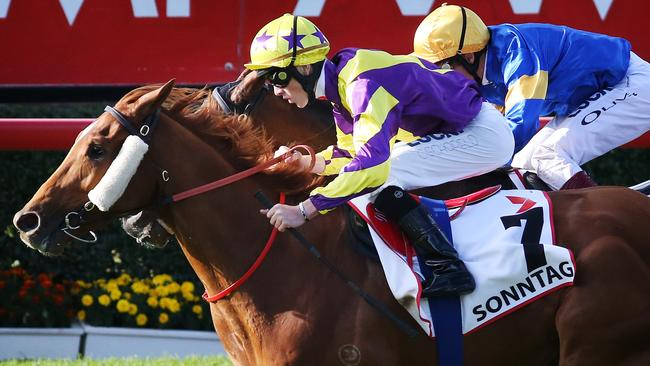 Sonntag gave trainer Henry Dwyer his first Group 1 win in the 2014 Queensland Derby. Picture: Tara Croser