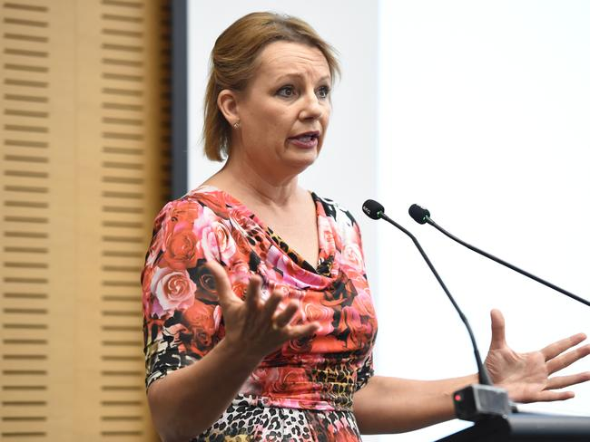 Health Minister Sussan Ley does not favour an amnesty. Picture: Lawrence Pinder