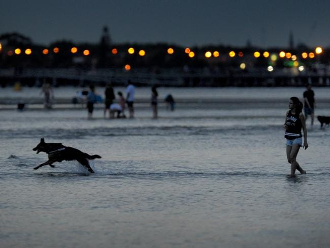 People escaping the heat enjoy a swim at Middle Park Beach. Picture: Andrew Henshaw