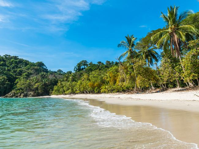 Playa Manuel Antonio, in Costa Rica's Manuel Antonio National Park, is among the world's top beaches.