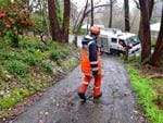 SES crew at a house in Crafers after a tree fell. Picture: Mark Brake