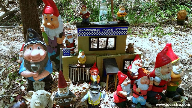 Jo-Castro-5_Going-Gnome.-Gnomesville-where-over-3000-gnomes-reside-in-the-forest.png