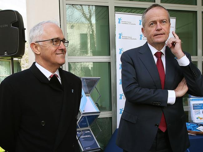 Malcolm Turnbull and Bill Shorten have been accused of protecting dual citizens. Picture: Kym Smith