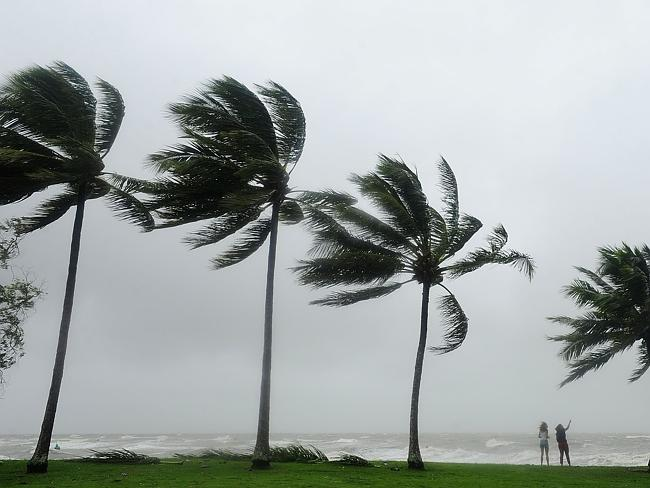 Cyclone Ita ... Tourists are seen standing in high winds among palm trees in Port Douglas.