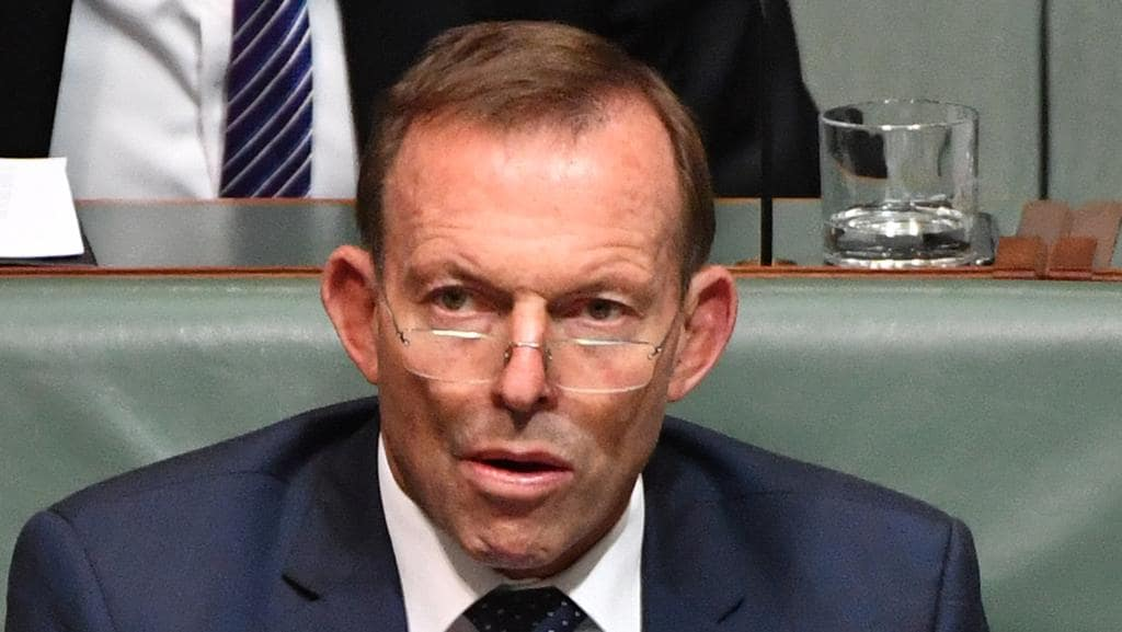 Nick xenophon tony abbott is a huge pain in the arse for Abbott house