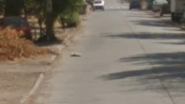 Way down the road, this zoomed in shot shows it still in the same position.