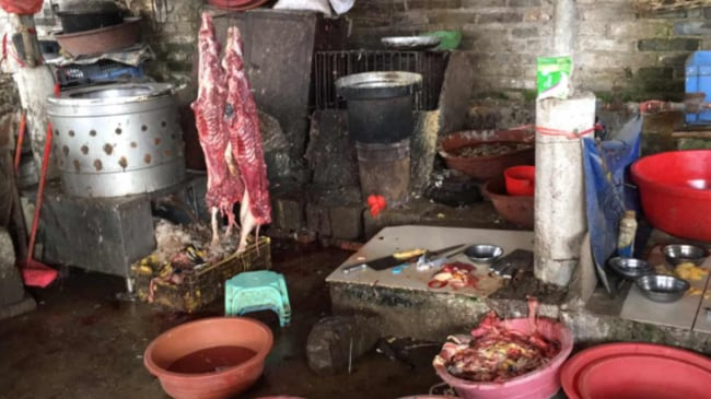 Dog meat being prepared for consumption. Picture: Gavin Fernando