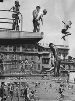 Boys leaping from diving boards at the Adelaide City Baths swimming pool in January 1956.
