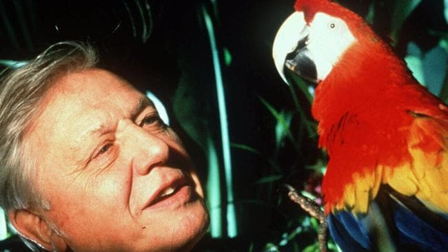 David Attenborough television career began in 1952 at the BBC.