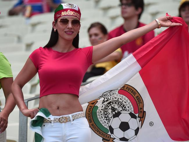 A Mexico fan cheers prior to a Round of 16 football match between Netherlands and Mexico at Castelao Stadium in Fortaleza.