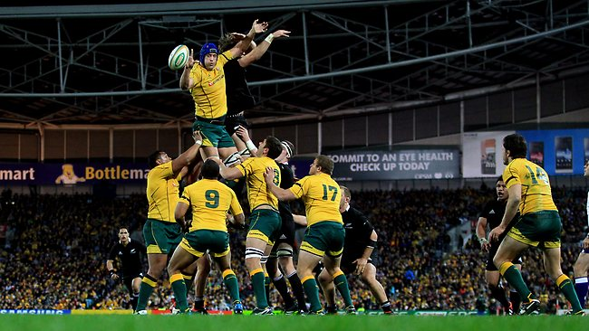 Nathan Sharpe has been one of the most dominant lineout jumpers of his generation. Picture: Mark Evans