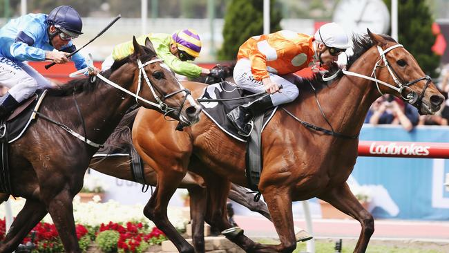 Who Shot Thebarman bounced back to his best in the Moonee Valley Cup.