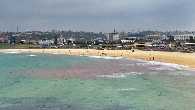 The red aglae bloom forced the closure of Bondi and Clovelly beaches. Picture: Craig Greenhill