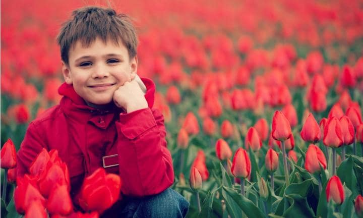 Smiling boy in red tulips field in Holland