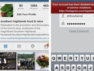 The account, before deletion, and after, the explanation @shfoodwine received.