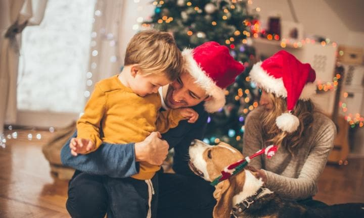 How to choose the right pet for the kids this Christmas