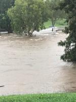 Kedron Brook flooding. Pic: Sue McVay