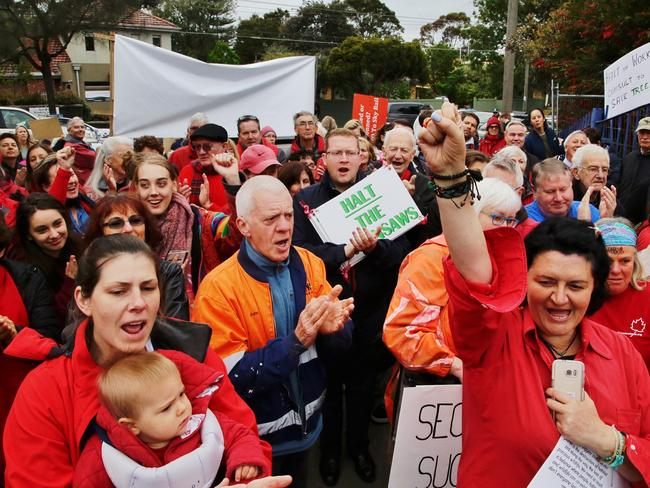 Protesters have saved more than 200 trees at the future Beaumaris Secondary College for now. Picture: Hamish Blair
