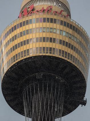 Sydney Tower was the scene of a tragedy earlier today. Picture: Julian Andrews.