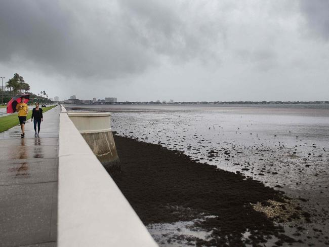 A couple walks down Bayshore Boulevard in Tampa. Picture: AFP