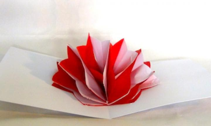 How to make a pop up paper flower video kidspot make a pop up paper flower mightylinksfo