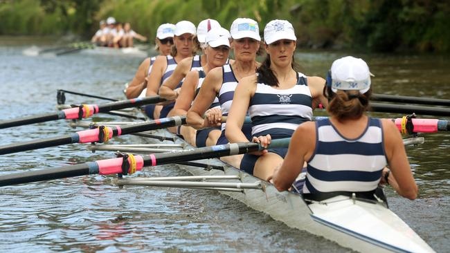 Rowers take to Yarra River for 57th annual Head of the Yarra regatta