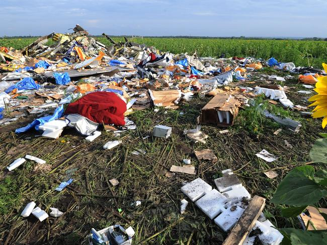 Wreckage from the MH17 flight is scattered among a sunflower field.