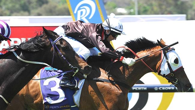 Perth Cup winner Black Tycoon is making his way by road to Adelaide for Monday's big race