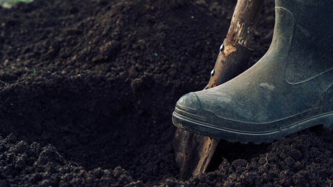 The police found him digging my grave. Photo: iStock