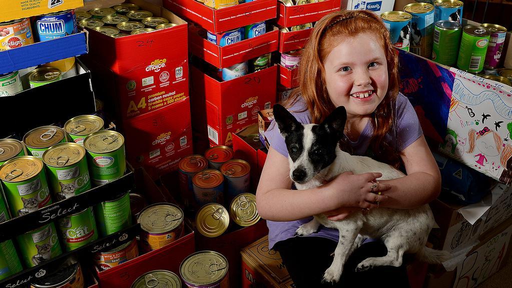 Coles Pet Dog Food Shopping
