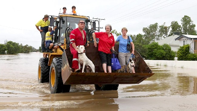 By any means necessary - every man and his dogs evacuated to safer ground / Picture: Rob Maccoll